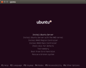 image of the Ubuntu Server installation menu